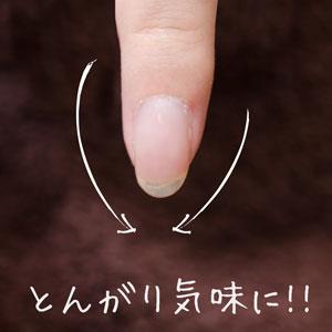 爪の形を整える