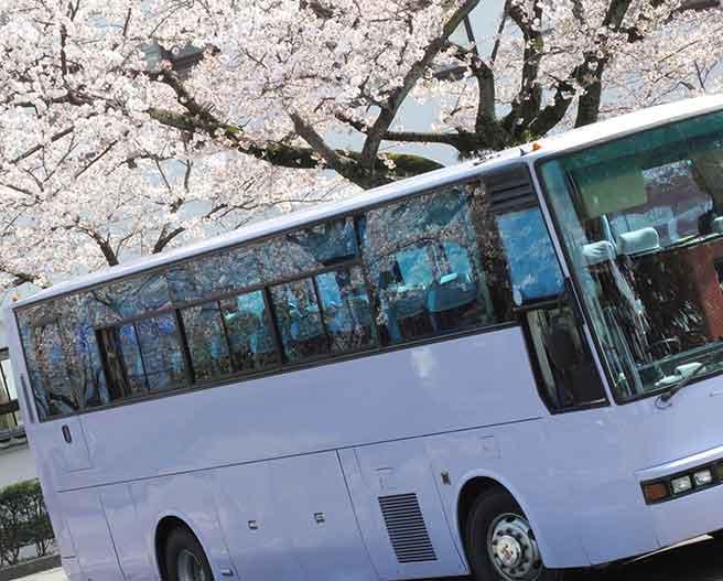桜の季節のバス合コン