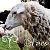 【牡羊座男性の性格&恋愛】本当は野生的?もこもこ牡羊男子の素顔