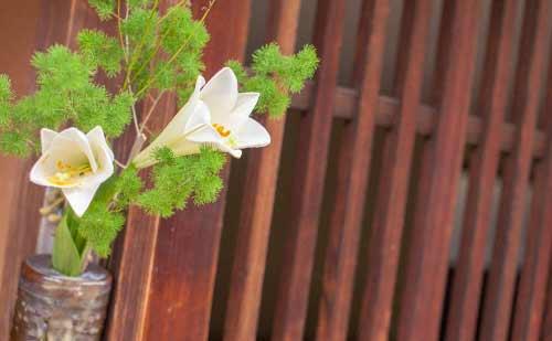 和風な玄関と花
