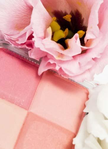 ピンクの薔薇とチーク