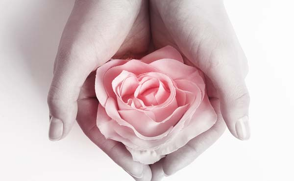 手に持った薔薇の花