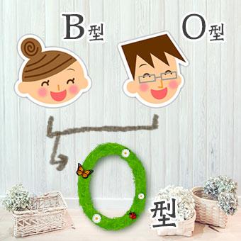 B型とO型の両親を持つO型さん