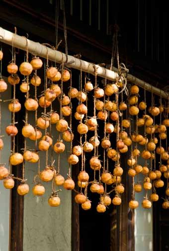 日本のドライフルーツ