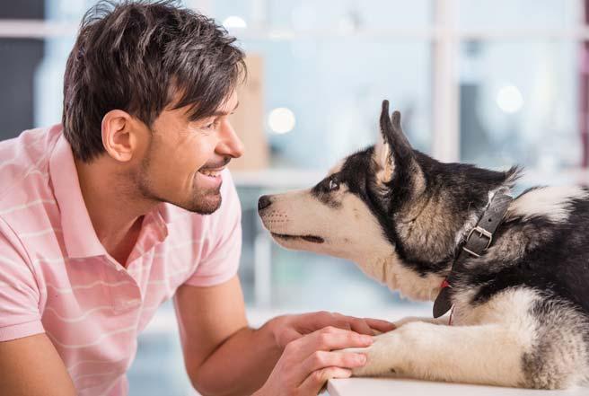 犬好き男子は従順な犬系女子が好き?