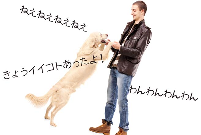 喜ぶテンションが高い犬のような女性が好き