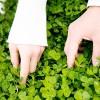 手をつなぎたい女性が彼と自然に手を繋ぐ方法5つ