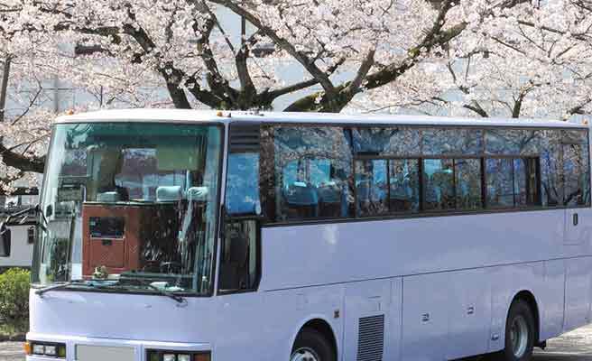桜の下に留るバス