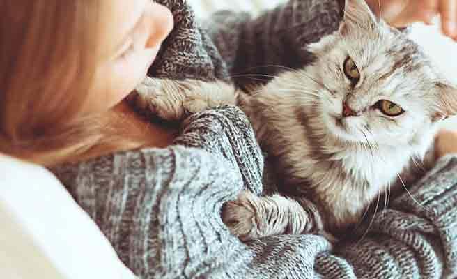 ネコを抱いて座る女性