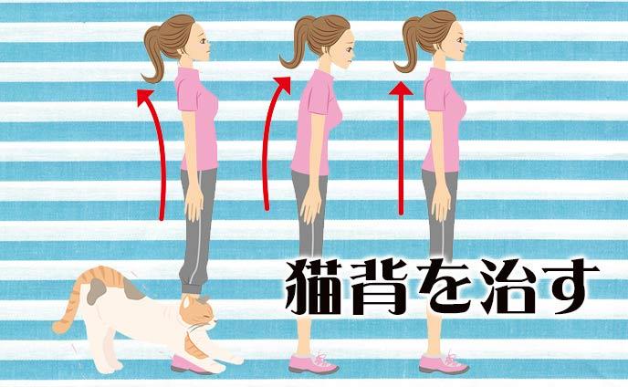 猫背を治す方法6つ正しい姿勢を身につける矯正ストレッチ