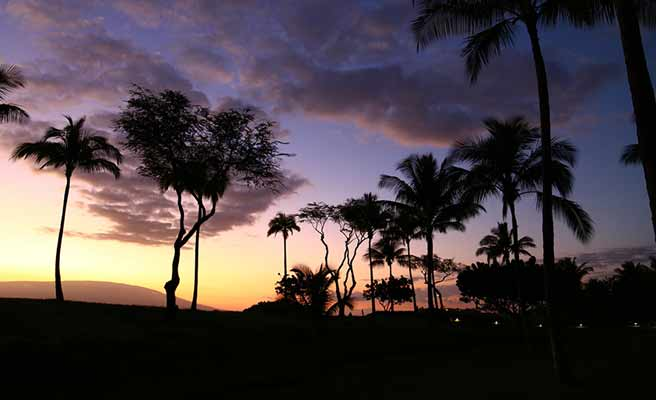 ハワイの夕暮れシルエット