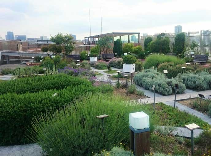 屋上にあるハーブガーデンでひとやすみ。なんと150種類のハーブが植えられているんだとか!