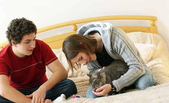 猫の世話をしてる女性を見つめる男性
