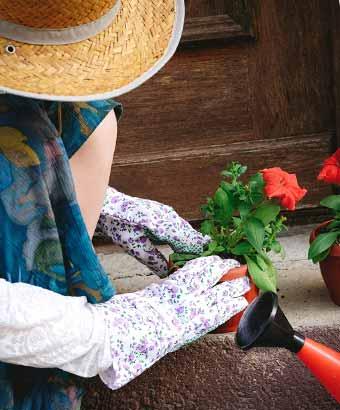 鉢植えを作る女性