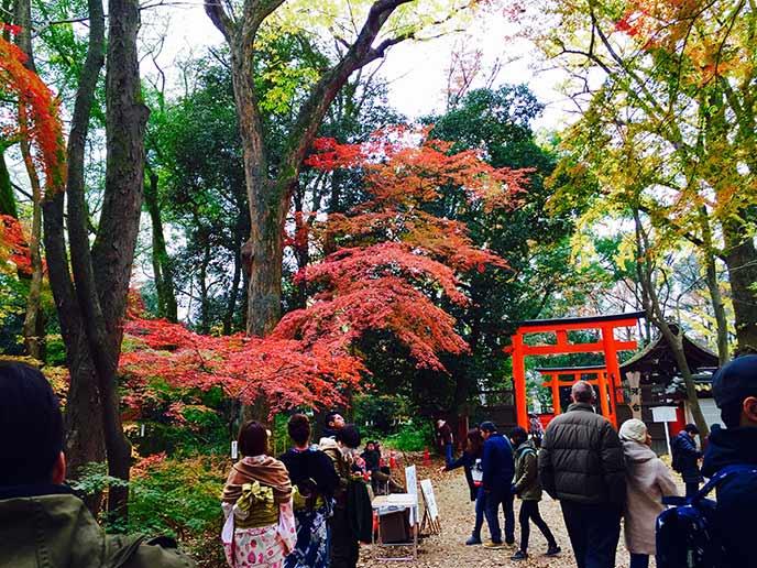紅葉のシーズンはお散歩に来る人が多いスポットです
