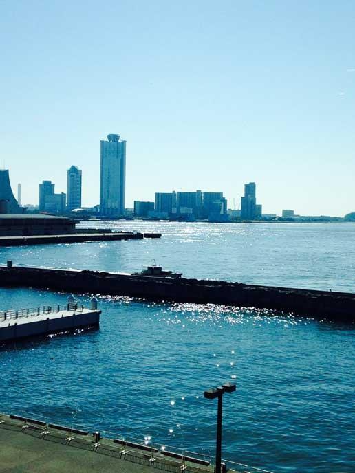 周辺のカフェから見ることのできる美しい港の風景