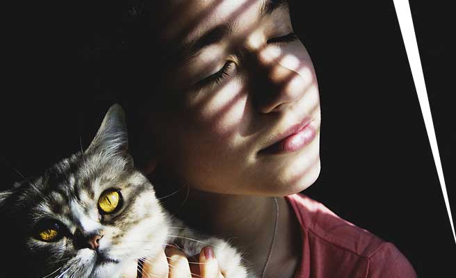 猫を抱いて窓際に立つ女性