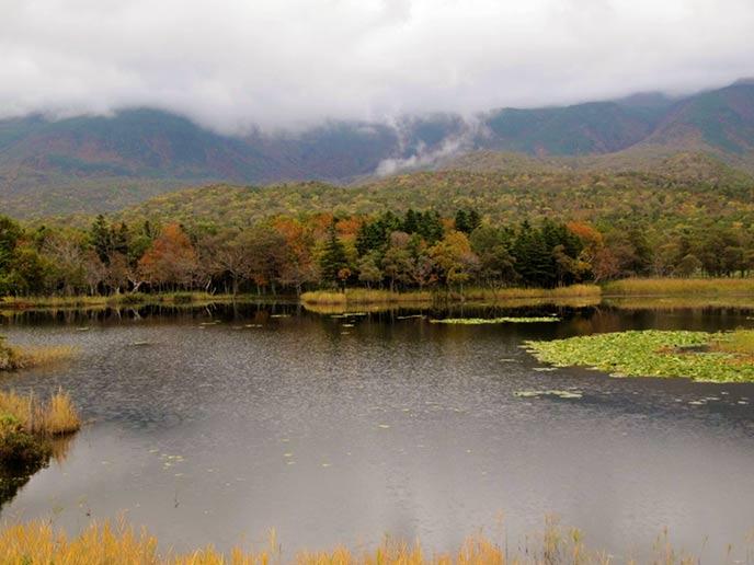 湖の水面に反射して映る紅葉もとても綺麗。大自然をたっぷりと満喫できそう♪