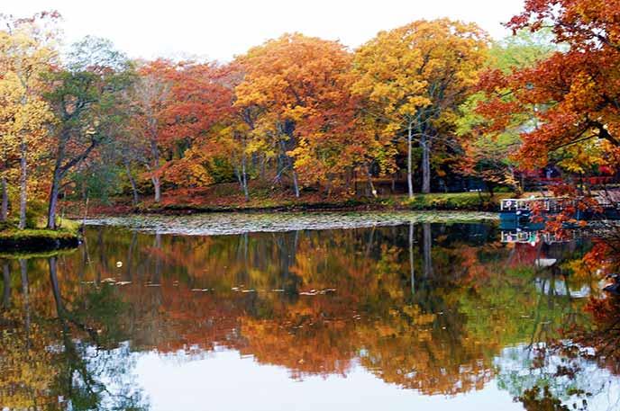 水面が、まるで鏡のように紅葉の姿を反射させる。倍に増えた色味がとても美しい。