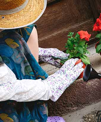 鉢植えの花の手入れをする女性