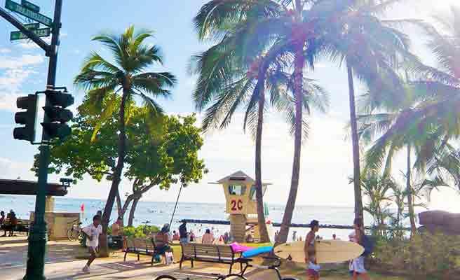 ハワイの海岸道路