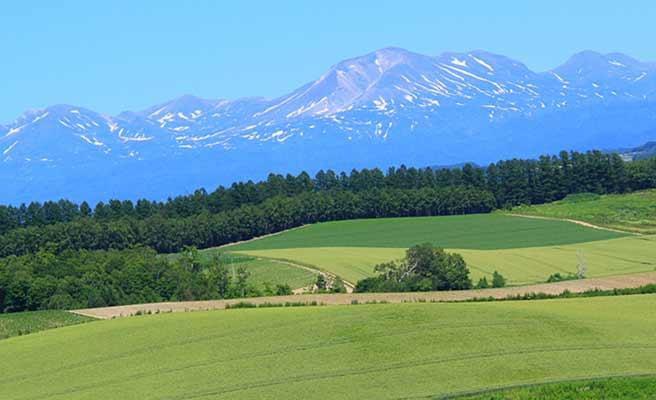 北海道美瑛の丘陵と背景の十勝連峰