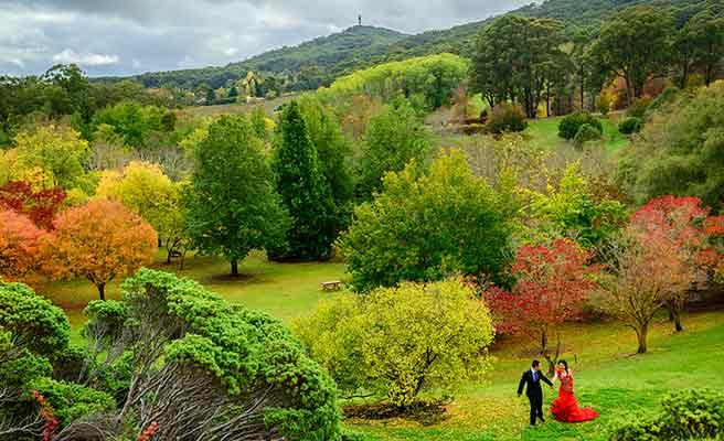 アデレードの公園を歩くカップル