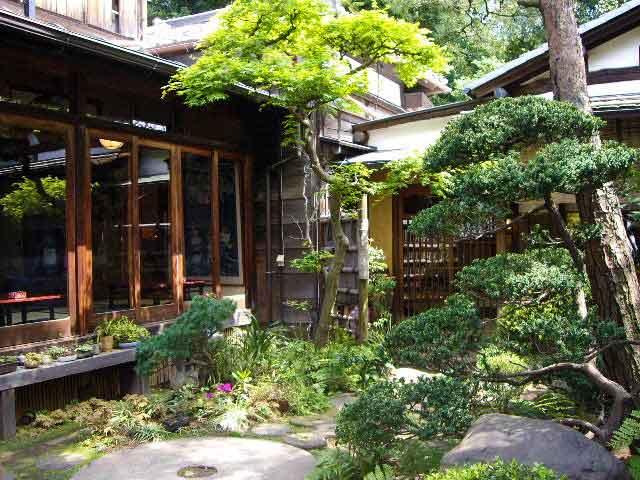 お庭の緑に癒される(●´ω`●)古き良き日本庭園を見ながらゆっくりした時間を過ごせます。