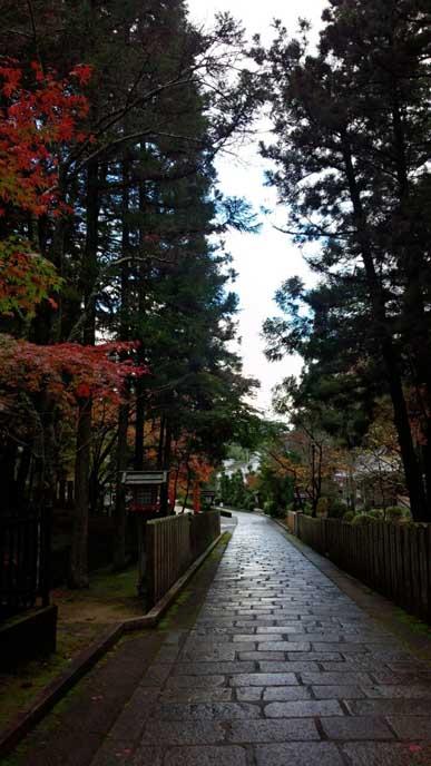 石畳の道の脇にも色づく木々が経ち並びます。