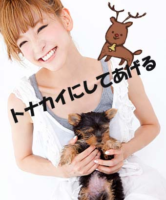 子犬を抱いてコスプレを考える女性