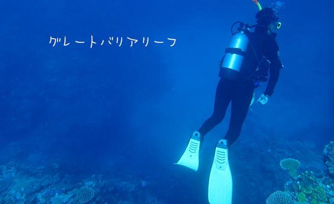 グレートバリアリーフの海でダイビング