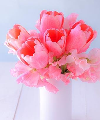 花瓶に挿しているチューリップ