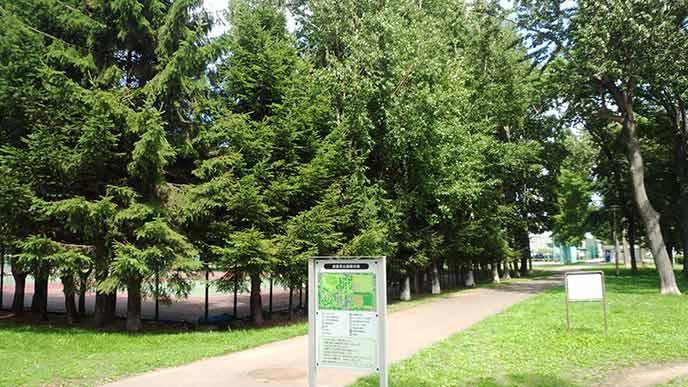 木々が立ち並び、芝生も綺麗な公園内を散策するのも楽しそう☆