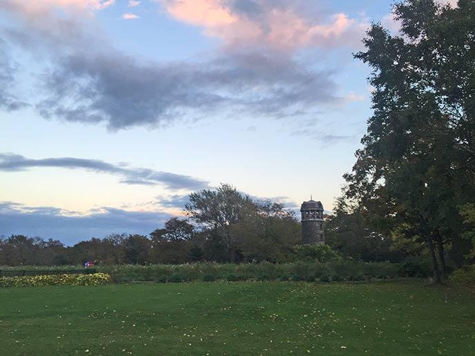 中央の広場は芝生が広がり、思い思いの過ごし方ができます☆