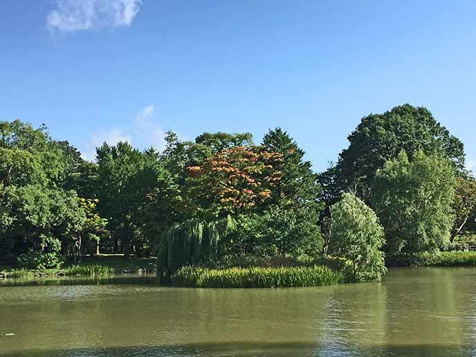 公園内にある大きな池。ボートに乗ってゆっくりと楽しむこともできます♪