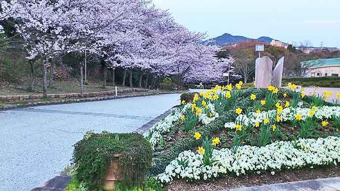 満開の桜とともに春の花々を見ることができます♪