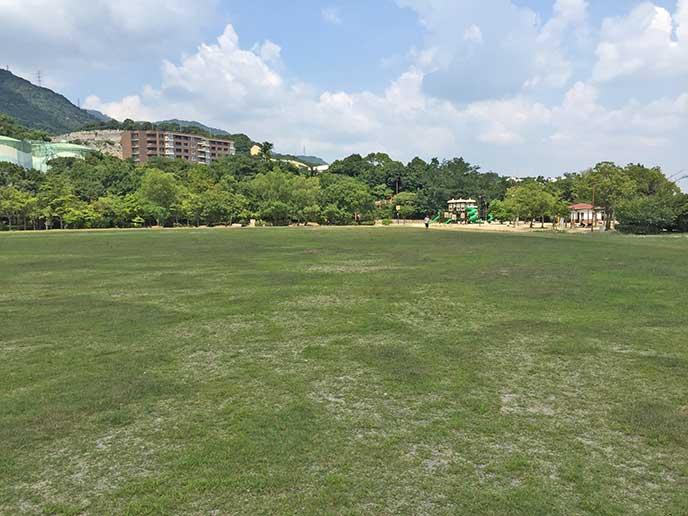 芝生の広がる広場☆シートを広げてピクニックを楽しむのも良さそう♪