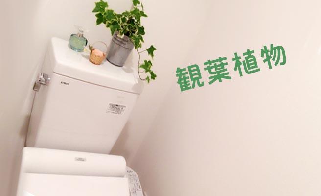 観葉植物を置いたトイレ
