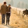 牧場デートをカップルで楽しむポイント9つ
