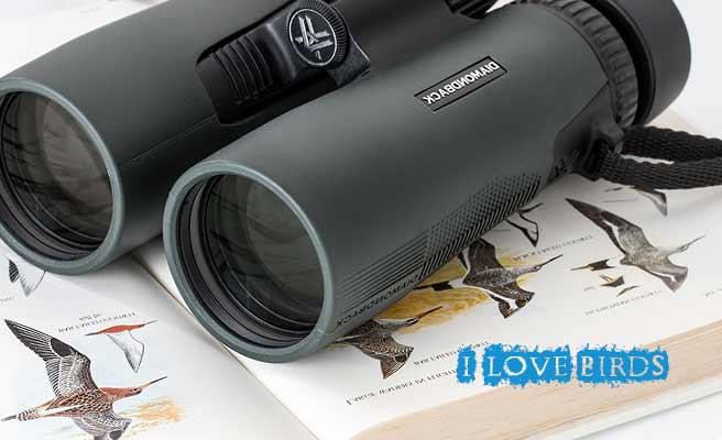 野鳥図鑑と双眼鏡