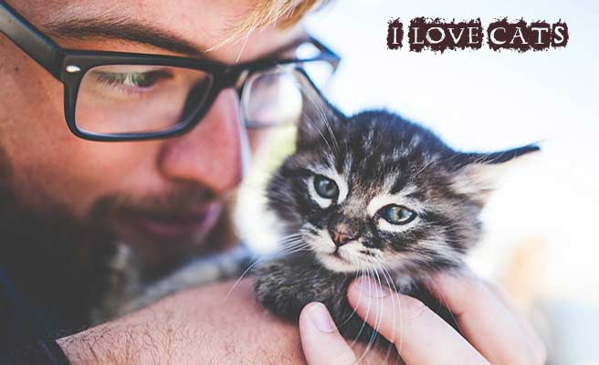 子猫を抱いて顔を近づける男性