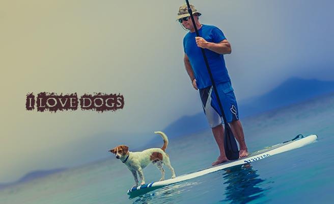 犬をサーフボードに乗せて立つ男性