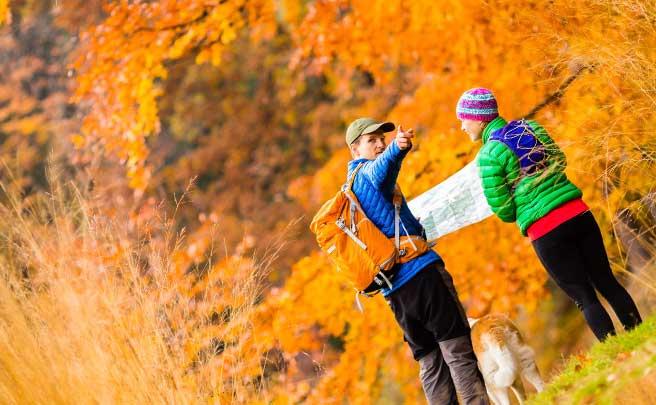 森の中で迷って地図を見ているカップル