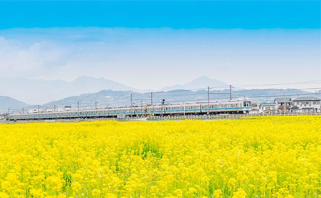 田舎の電車の風景