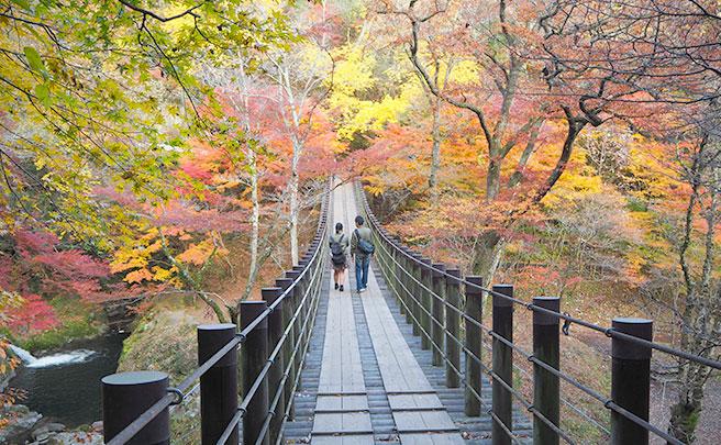 橋を渡るカップルの後ろ姿