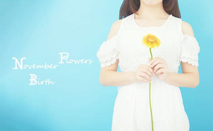 11月の誕生花と花言葉・あなたへの誕生日別アドバイス