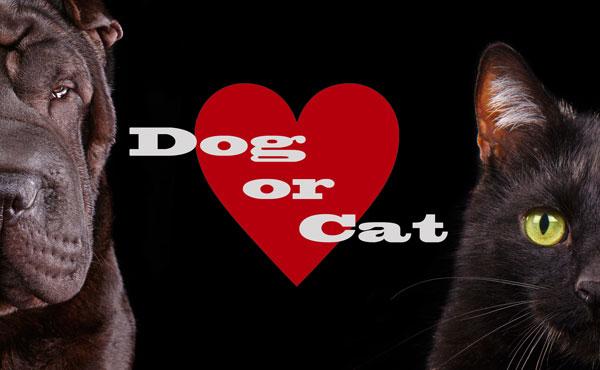 従順犬派?それともツンデレ猫派?アナタの恋愛攻略法診断します