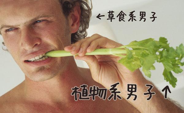 植物系男子の草食系を超える困った生態あるある4つ