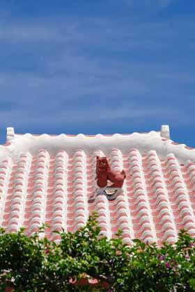 沖縄っぽい屋根