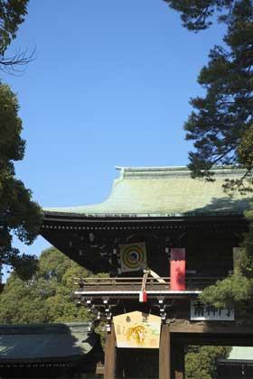 初詣で毎年テレビに映る明治神宮/東京都